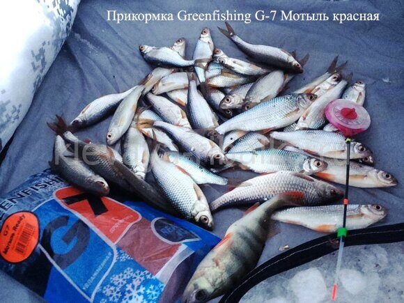 2018.01.22 Котлован Криводановка Greenfishing G7 мотыль